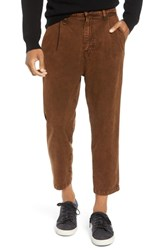 Hudson Jeans Pleated Cropped Pants Mineral Brown