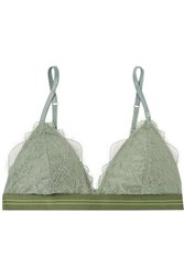 Love Stories Darling Stretch Lace Triangle Bra Gray Green