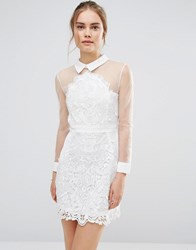 Endless Rose Sheer Lace Shirt Dress White