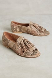 Anthropologie Liendo By Seychelles Aragon Open Toe Flats Brown Motif