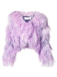 Marques Almeida Marques'almeida Cropped Feather Shrug Women Polyester Ostrich Feather M Pink Purple