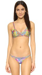 Luli Fama Barefoot And Free Strings Bikini Top Multi