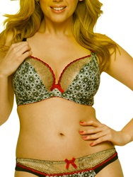 Curvy Kate Illusion Plunge Bra Cranberry Black