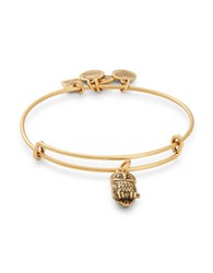 Alex And Ani Ode To The Owl Charm Bangle Gold