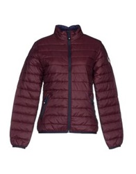 North Sails Jackets Deep Purple