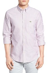 Lacoste Men's Regular Fit Bengal Stripe Oxford Woven Shirt Wine White
