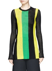 Proenza Schouler Stripe Open Mesh Knit Long Sleeve Top Multi Colour