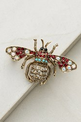 Anthropologie Victorian Insect Brooch Gold