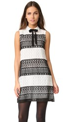 Alice Olivia Hilly Collared Flare Dress With Bow Black White