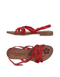 Cantarelli Sandals Red