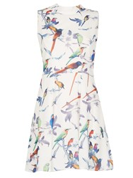 Cutie Bird Print Dress White