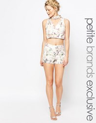 True Decadence Petite Floral Jacquard Tailored Shorts Multi