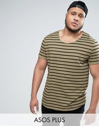 Asos Plus Longline Striped T Shirt With Curved Hem And Roll Sleeve Leuitenant Green