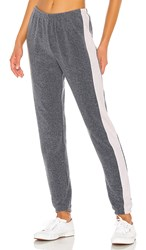 Wildfox Couture Track Knox Pants In Gray. Night And Rose