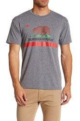 Dilascia Ca Republic Bear Tee Gray