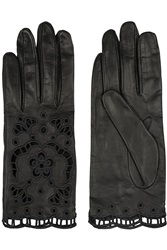 Dolce And Gabbana Cutout Embroidered Leather Gloves