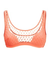 Agent Provocateur Shannon Fishnet Bikini Top Female Orange
