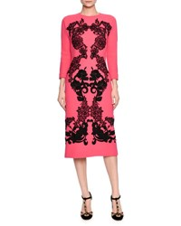 Lace Applique Wool Sheath Dress Fuchsia Black Blk Fuchsia