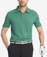 Izod Men's Striped Performance Golf Polo Botanical Garden