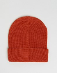 7X Beanie In Burnt Oange Orange