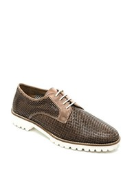 Bernardo Iris Perforated Leather Oxfords Taupe