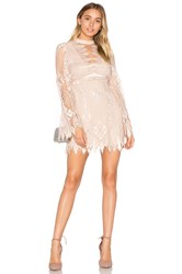 Free People Deco Lace Mini Dress Blush