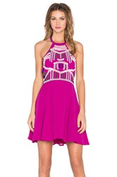 Nbd X Naven Twins Flirty Girl Skater Dress Fuchsia