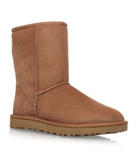 Ugg Australia Classic Short Boots Female Brown