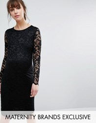 Queen Bee Lace Bodycon Dress Black