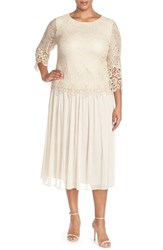 Plus Size Women's Alex Evenings Lace And Chiffon Tea Length Dress
