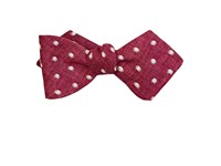 Thomas Mason Men's Dot Embroidered Duke Bow Tie Burgundy