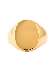 A Kind Of Guise Signet Ring Metallic
