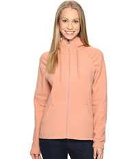 The North Face Mezzaluna Hoodie Rose Dawn Women's Sweatshirt Multi