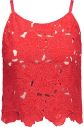 Alice Olivia Alanis Cropped Floral Crochet Top Red
