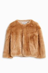 Elizabeth And James Women S Sawyer Furry Crop Jacket Boutique1 Beige