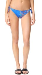 Roberto Cavalli Printed Bikini Bottoms Multi Royal