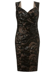 Ariella Elsa Lace Shift Dress Black