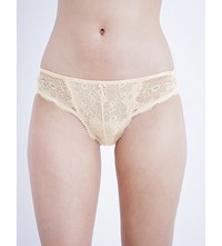 Panache Clara Stretch Lace And Mesh Briefs Nude
