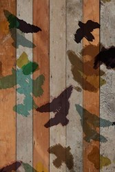 Parvez Taj Birds Reclaimed Wood Wall Art Multicolor