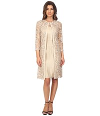 Adrianna Papell Lace Yoke Shimmer Sheath Jacket Champagne Women's Dress Gold