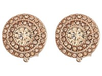 Lauren Ralph Lauren Vintage Crystal Clip Stud Earrings Crystal Rose Gold Earring