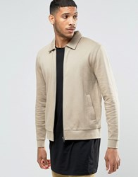 Asos Jersey Harrington Jacket In Beige Silver Mink