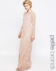 True Decadence Petite Allover Floral Applique Maxi Dress Blush Pink