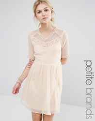 Vero Moda Petite Mesh Yoke Skater Dress Cream Tan
