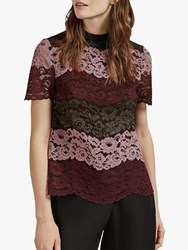 Ted Baker Merzey Lace Short Sleeve Top Red Bordeaux