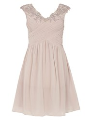 Dorothy Perkins Showcase Bardot Prom Dress Pink