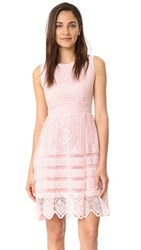 Cupcakes And Cashmere Summers Lace Fit Flare Dress Soft Pink