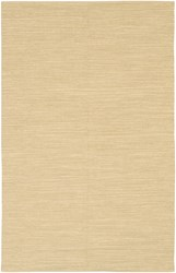 Chandra India Patterned Rectangular Contemporary Area Rug 2' X 3' Beige