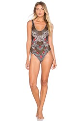 Skye And Staghorn Maasai Paneled Swimsuit Brown