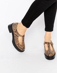 Park Lane Platform T Bar Suede Flat Shoes Beige Brown Snake Multi